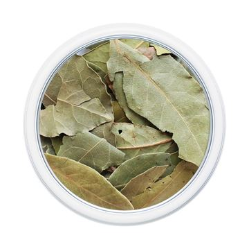 Picture of Bay Leaf