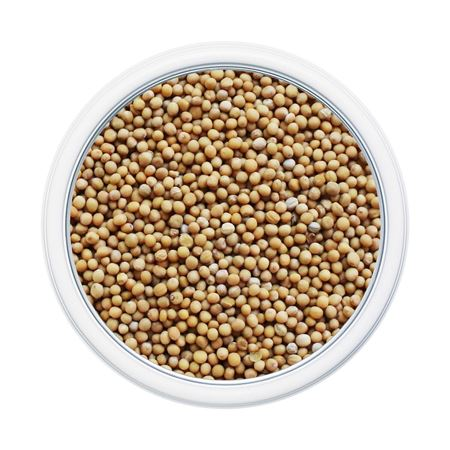 Picture of Mustard Seed