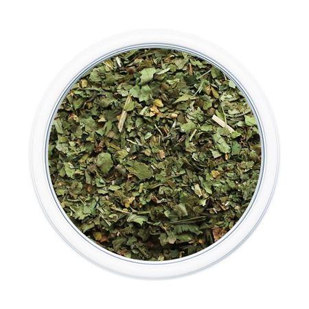 Picture of Cilantro Leaf